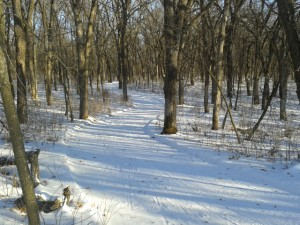 Olmsted County Park - Chester Woods Park1
